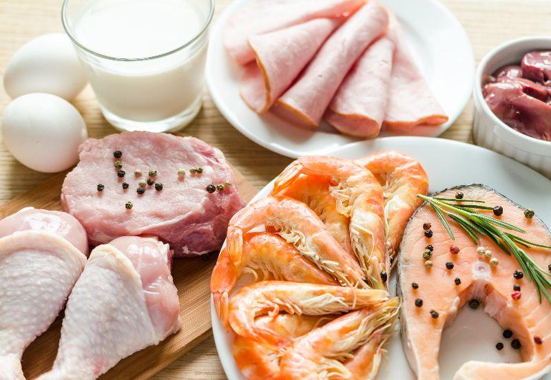 Proteinas necesarias para acelerar el metabolismo