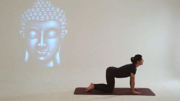 Video 2, Básico Yoga portada